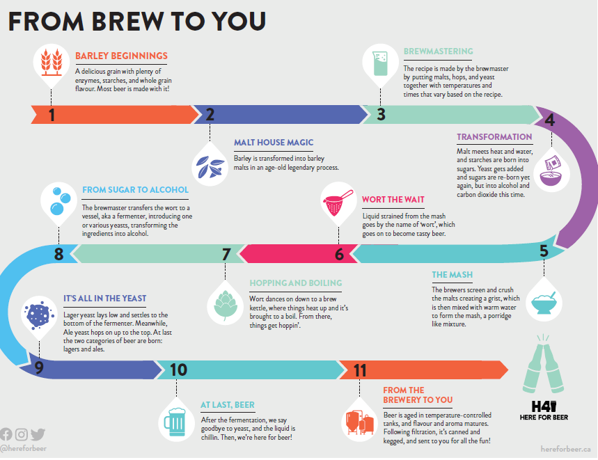 From Brew to You infographic